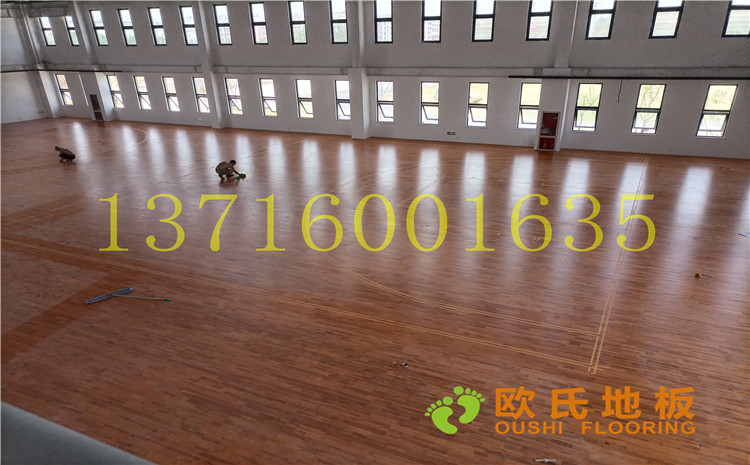江苏宿迁运河路学校体育馆BOB棋牌app下载案例-欧氏实木运动地板厂家
